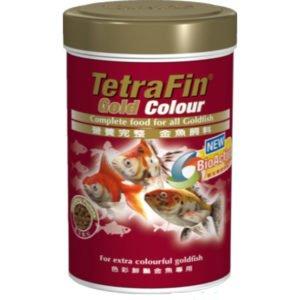 Tetra Fin Gold Colour