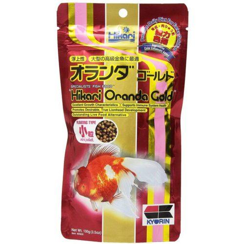 Hikari Oranda Gold Mini 1