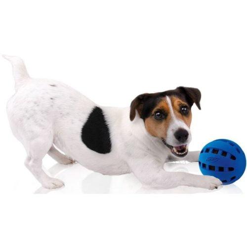 Nerf Dog Squeak Checker Ball 2.5-inch 4
