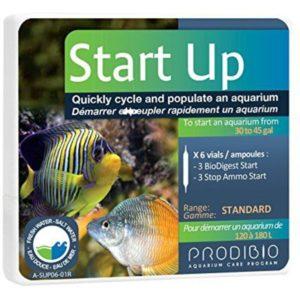 ProdiBio Start Up