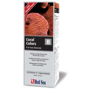 Red-Sea-Coral-Colors-B