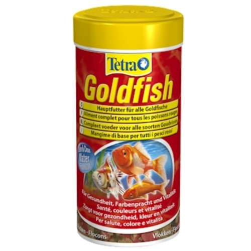 Tetra Goldfish 1