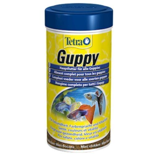 Tetra Guppy 1