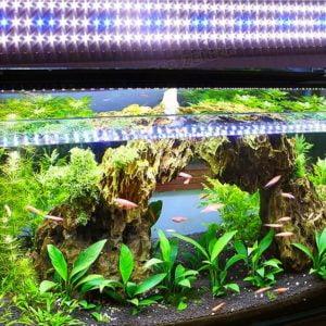 Planted Aquarium LED