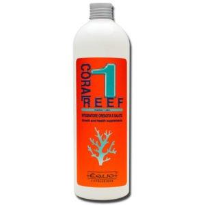 coral reef 1 indiefur.com