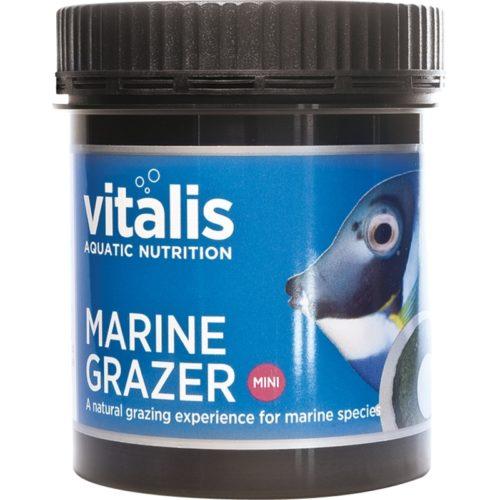 marine-grazer-medium indiefur.com