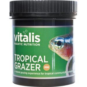 tropical-grazer-medium indiefur.com