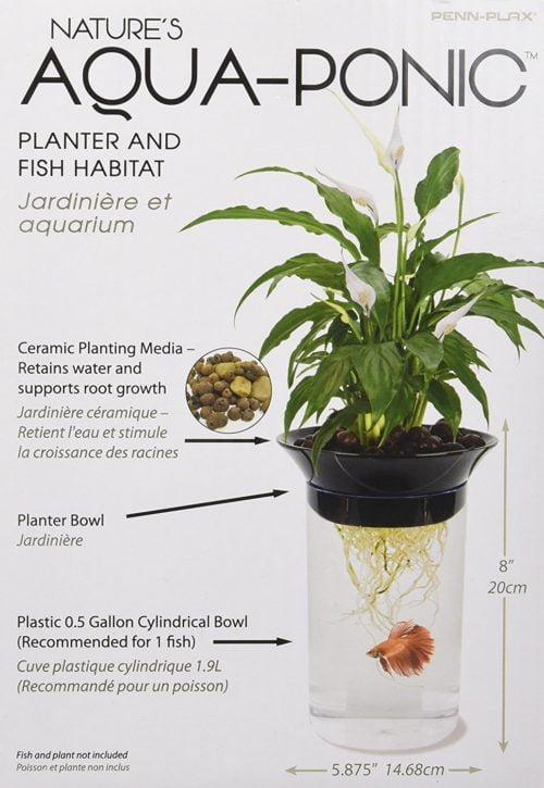 Penn-Plax Nature's Aqua-Ponic Planter and Fish Habitat 4