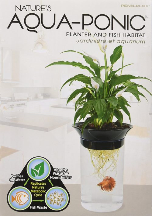 Penn-Plax Nature's Aqua-Ponic Planter and Fish Habitat 2