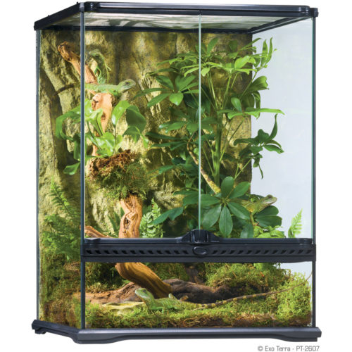 Exo Terra Natural Terrarium - Advanced Reptile Habitat 3