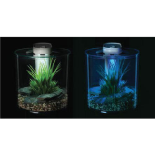 Marina 360° - Cool Desktop Aquarium 10 L (2.65 US gal) 1
