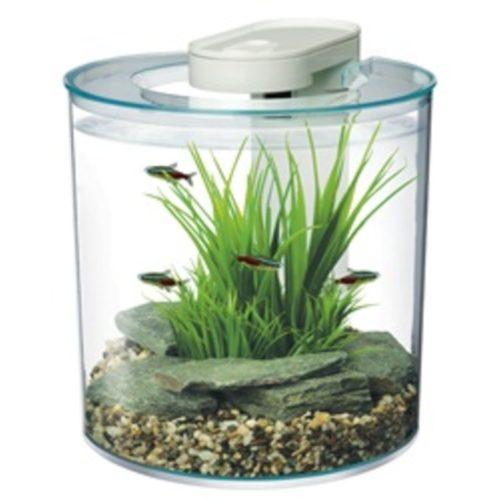 Marina 360° - Cool Desktop Aquarium 10 L (2.65 US gal) 2