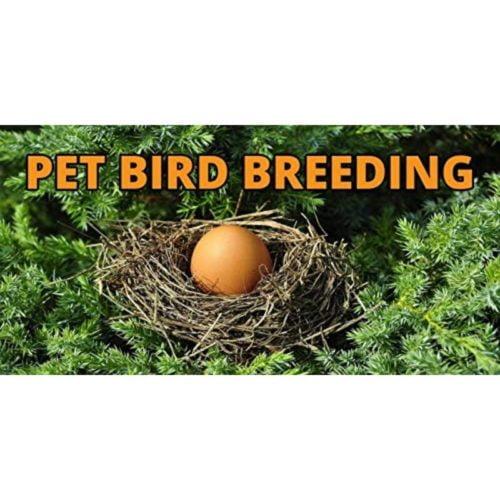 Pet Care International Breed-X 3
