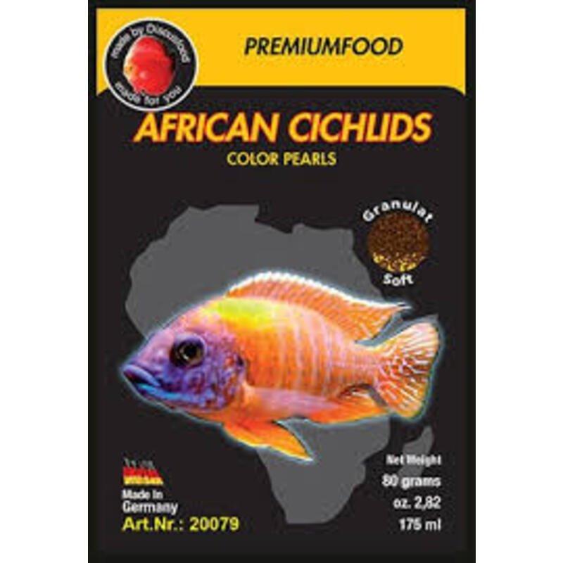 Exotica African Cichlid Color Indiefur.com