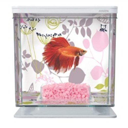Marina Betta Kit - Flower 2