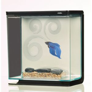 Marina Betta Kit - Zen Theme Indiefur.com