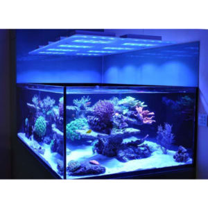 Marine Aquarium LED