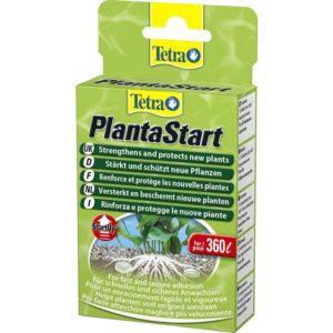 Tetra Planta Start Indiefur.com